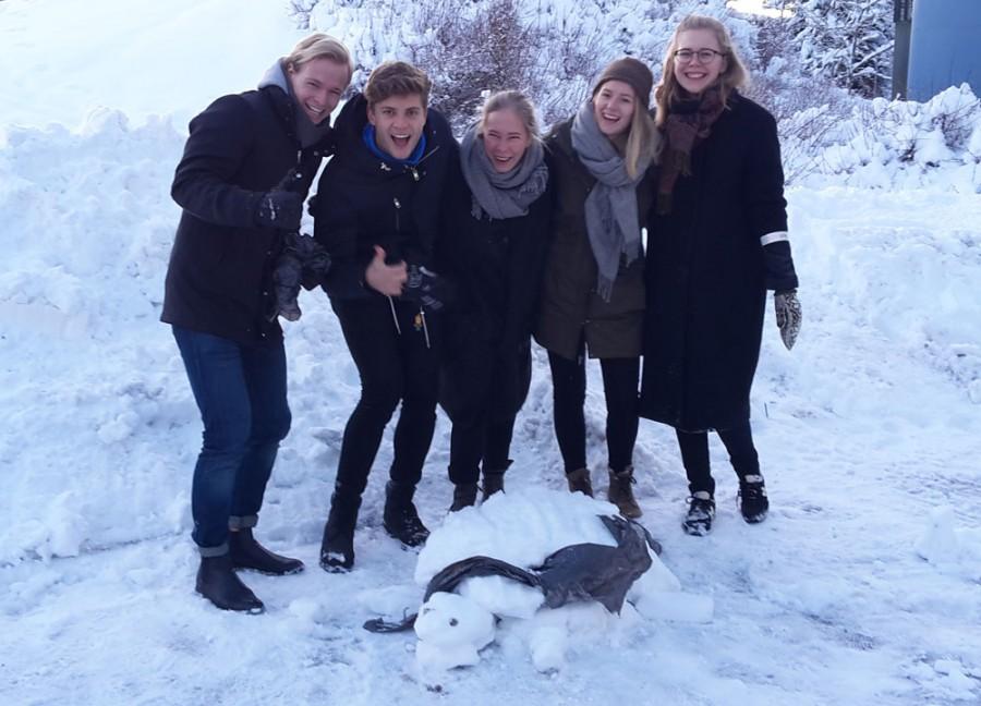 EIT-gruppe med snøskilpadde