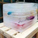 An ice cube art installation. Photo.