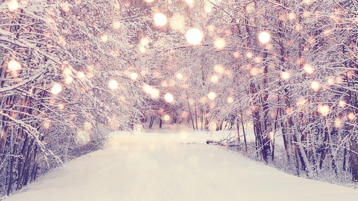 Snøkledd skog og lys.