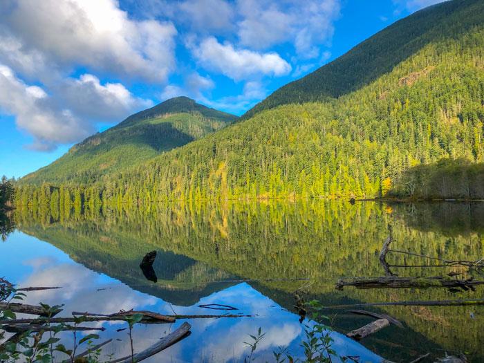 Naturlandskap, skog, fjell, sjø. foto