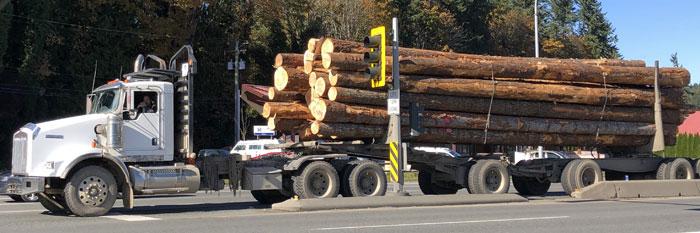 Logging-Truck. foto
