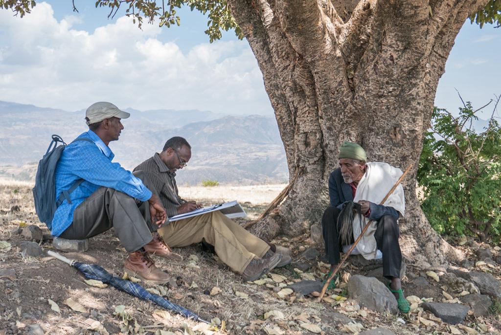 Tre menn sitter under et tre. En av dem gjør notater. Foto.