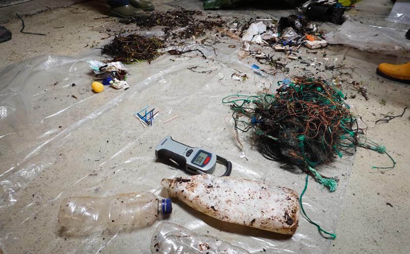 Marint avfall sorteres utover gulvet. foto