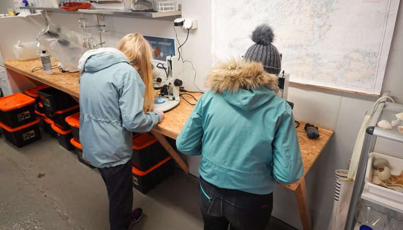 Elevene studerer jordprøve i stereolupe. Foto