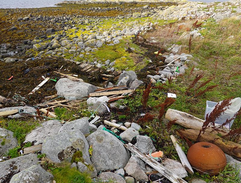 Søppel i fjæra. Foto
