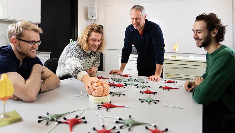 Studenter og foreleser ser på modell av hjerne og av nevroner. foto
