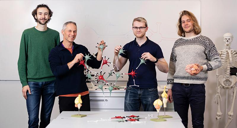 Studenter og foreleser som viser frem byggesett med nevroner. Foto