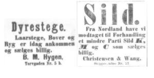 Hentet fra Aftenposten desember 1875.