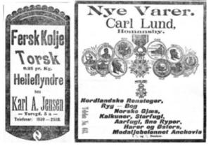 Hentet fra Aftenposten Desember 1895