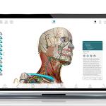 Screenshot of Human anatomy atlas in Visible Body