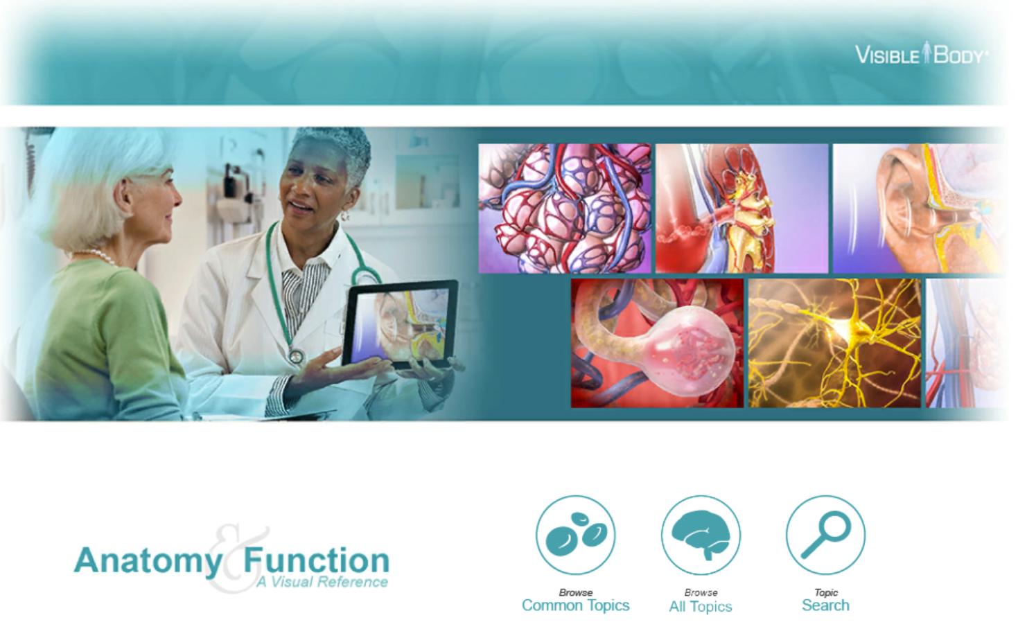 Skjermdump fra Anatomy and function
