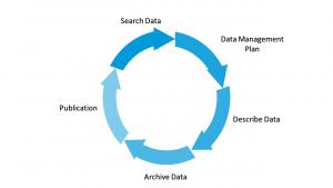 Circle of data illustration
