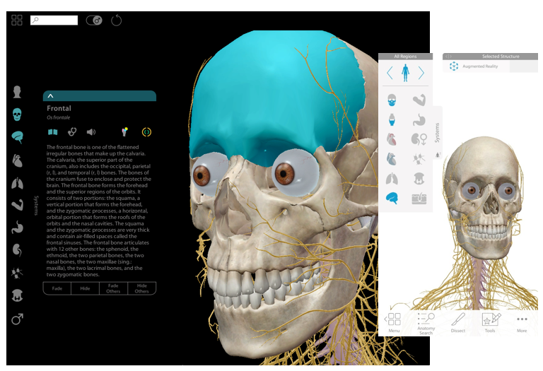 The library provides electronic e-resources for anatomy and physiology educations.