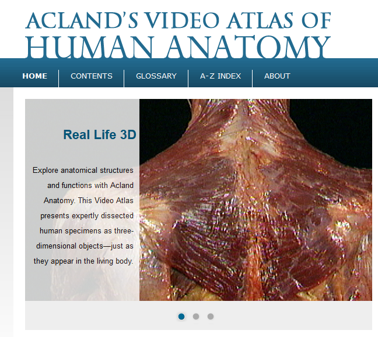 Acland Anatomy conatins dissection videos that helps you learn anatomy.