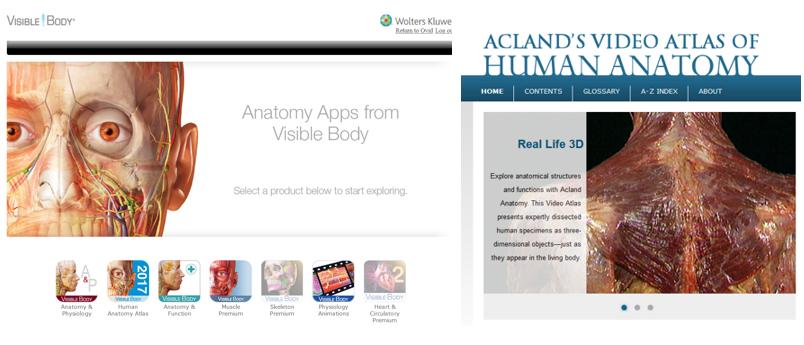 Vi tilbyr flere 3D anatomiske atlas og animasjoner på nett