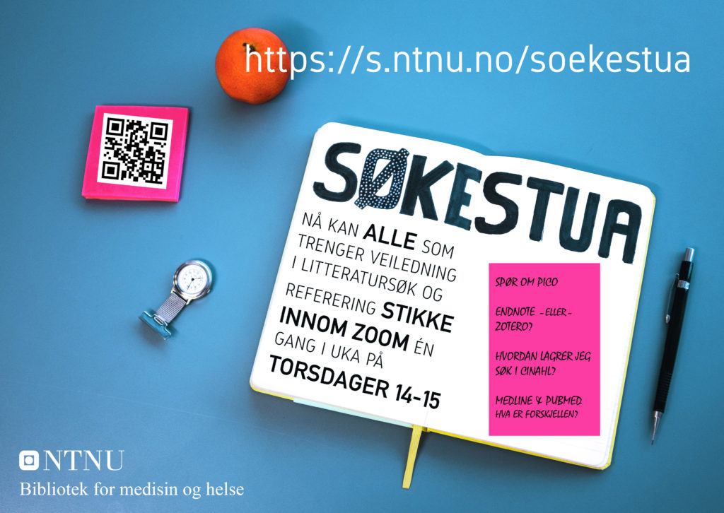 Du kan få digital veiledning ved å besøke Søkestua i Zoom