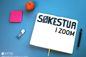 Søkestua in Zoom