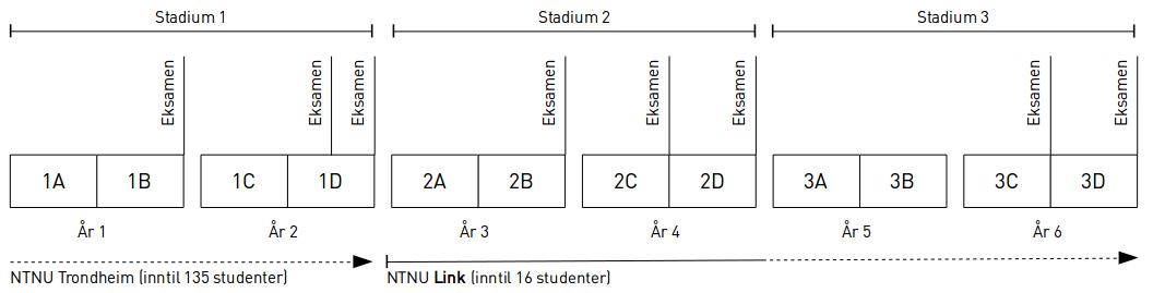 Fjerde studieår i NTNU Link