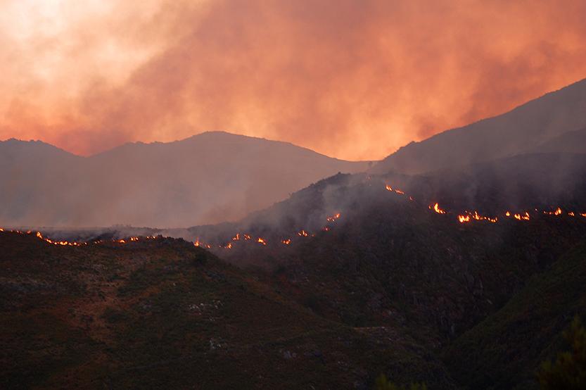 Naturkatastrofer, væpnet konflikt og bistand