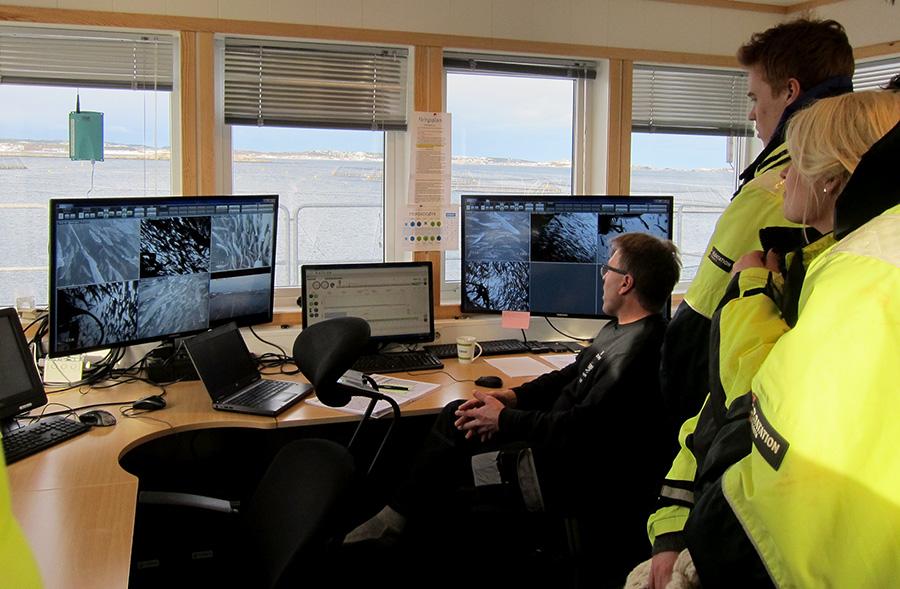 Nytt havbruksstudie gir nye jobbmuligheter