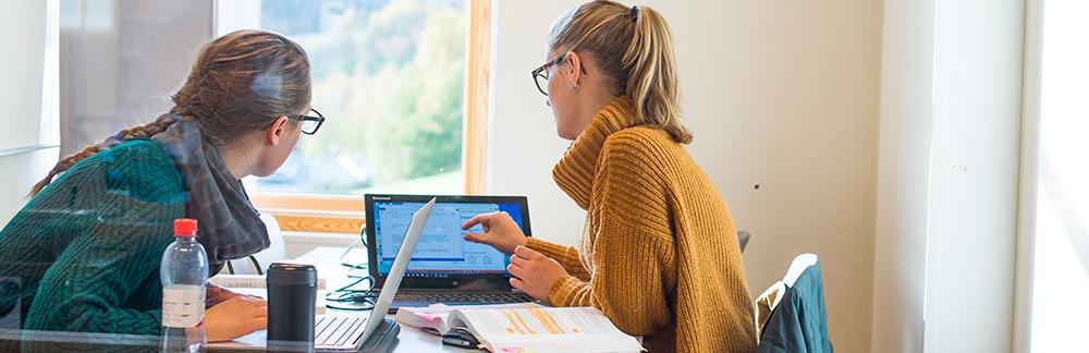 2 studenter som jobber sammen med bøker og PC.