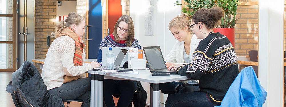 Studenter på Dragvoll gjør gruppearbeid