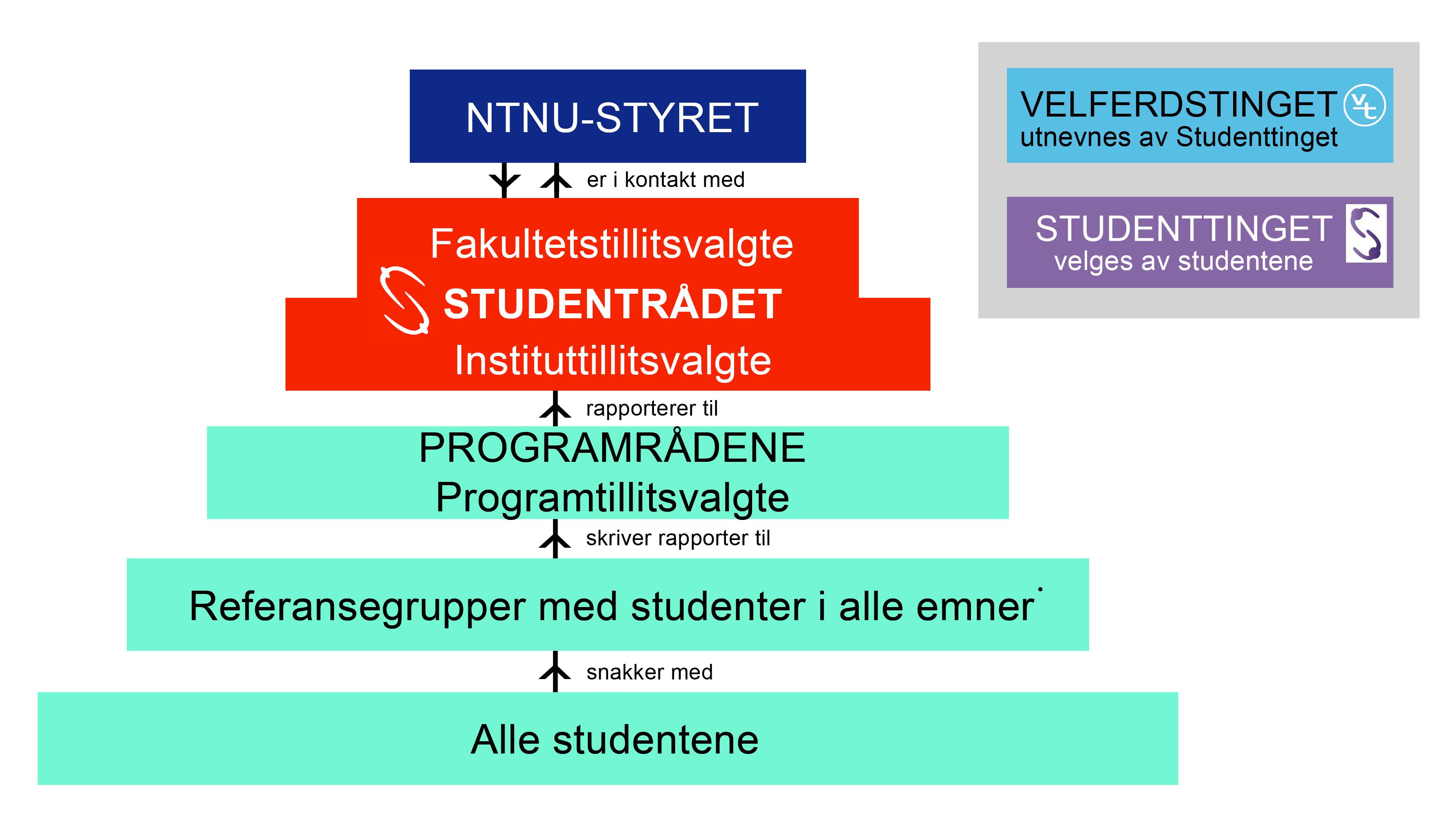 Organisasjonskart, Studentdemokratiet. Grafikk.