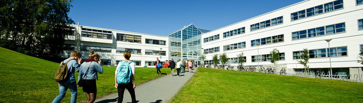 Hovedbygg på NTNU Campus Dragvoll, mennesker som går mot bygget,