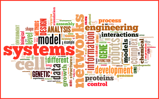 NTNU Biotechnology tag cloud