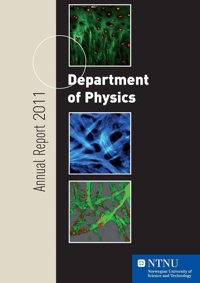 Department of Physics, Annual report 2011