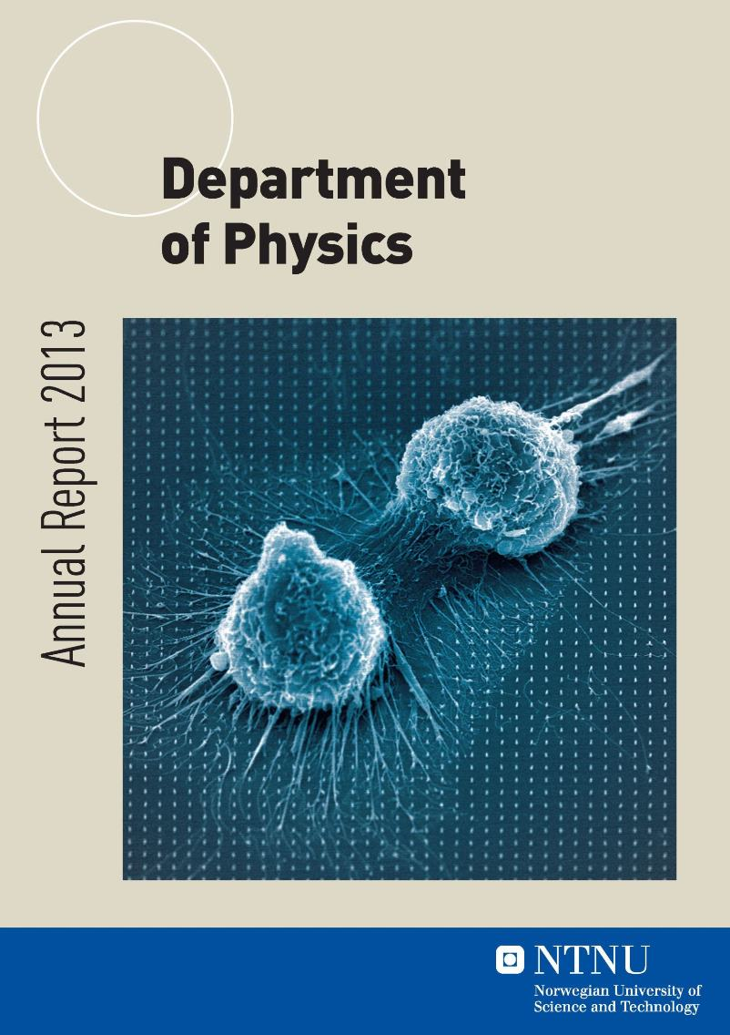 Department of Physics, Annual report 2013 [pdf]