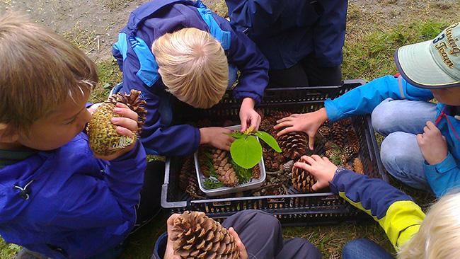 Aktivitet i arboretet. Foto: Wenche Eidshaug.