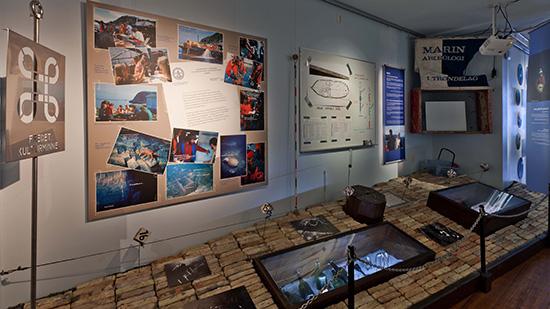 The deep sea Fish Photo: NTNU University Museum