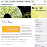 Fauna Norvegica NTNU University Museum