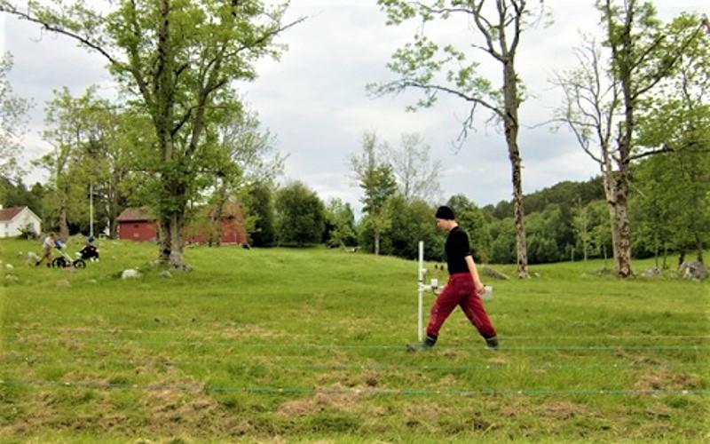 Magnetometer survey. Early Christian burial site at Veøy (Norway). Photo: Arne Anderson Stamnes / NTNU Vitenskapsmuseet