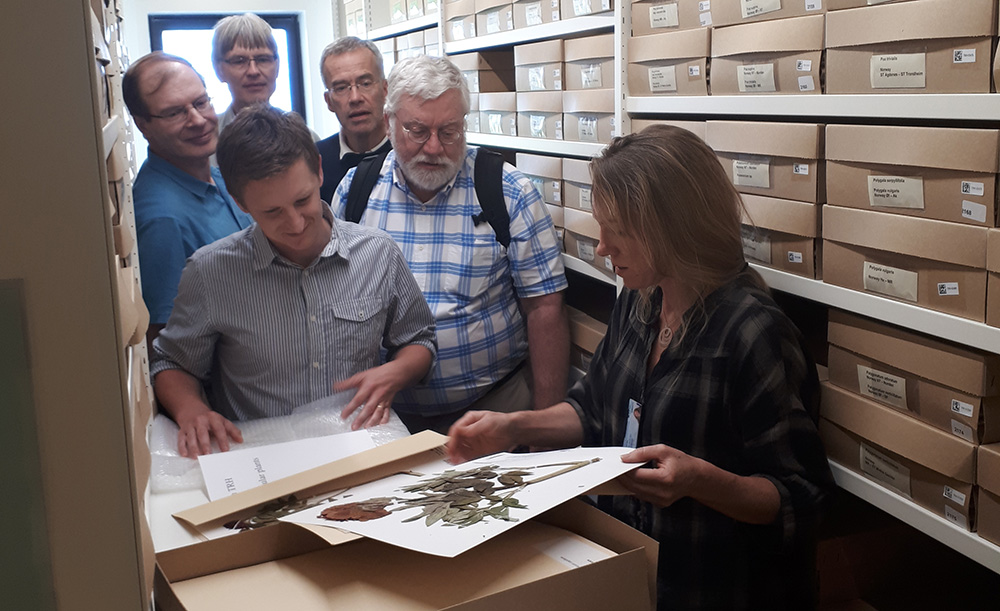 Group of people in the herbarium.