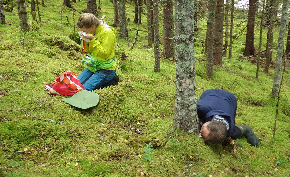 Two researchers doing fieldwork in the forest.