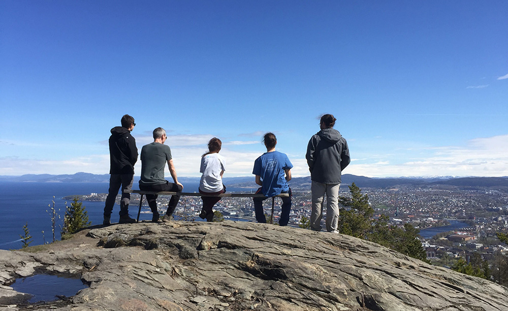 Group of people on a hill looking out over the city of Trondheim.