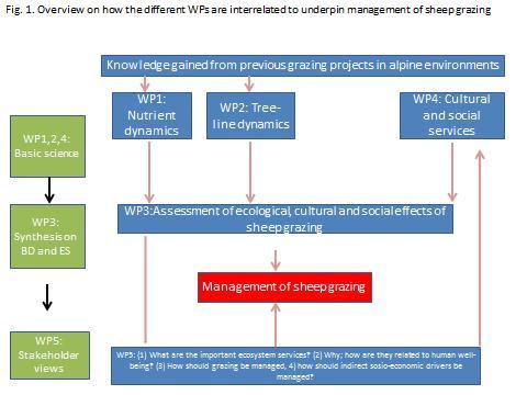Fig. 1: Oversikt over hvordan de ulike arbeidspakkene er integrert i prosjektet