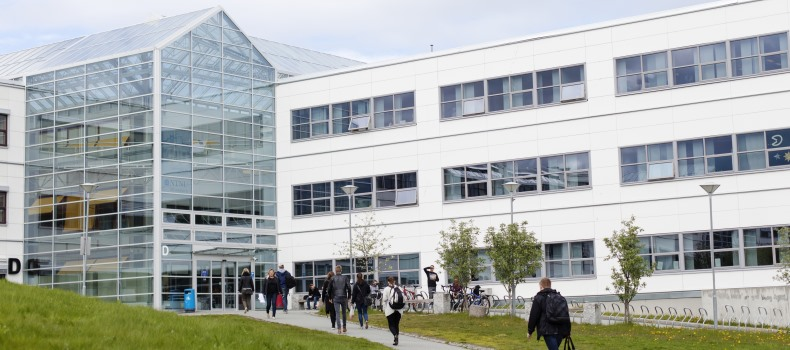 Biblioteket strekker seg over to bygg med en innendørs gangbru fra det ene til det andre bygget.