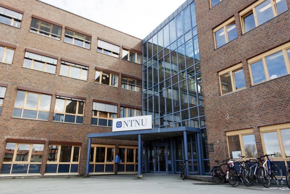Inngangsparti til bygningen der biblioteket er lokalisert. Foto.