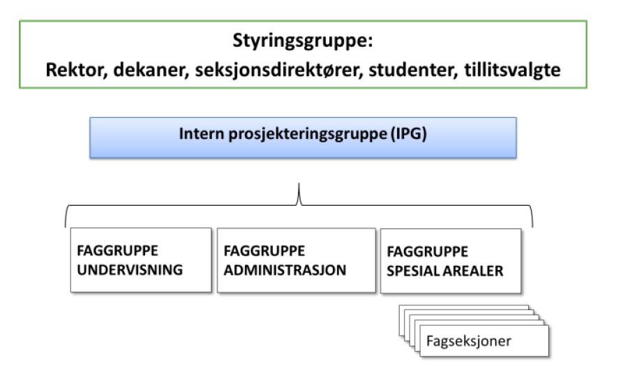 Illustrasjon av prosjektets organisering