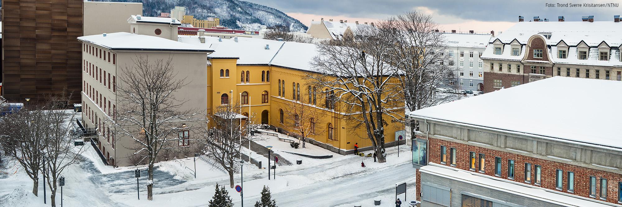 Fasaden av Vitenskapsmuseet.