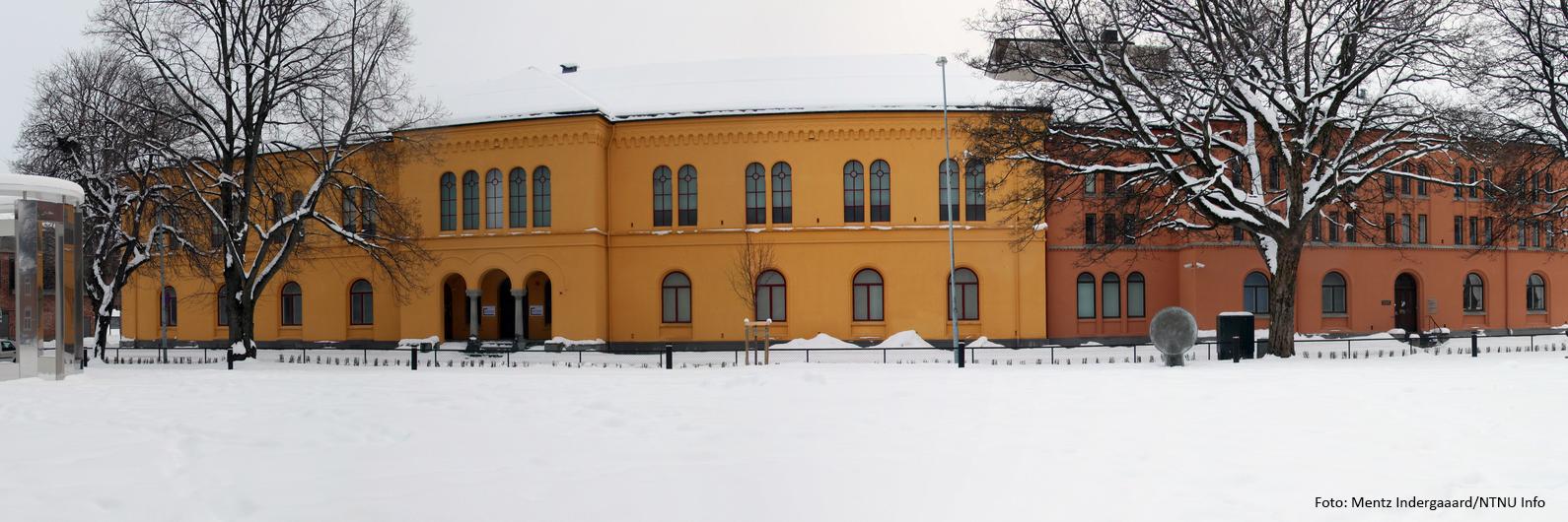 Vitenskapsmuseet i Trondheim moderniseres
