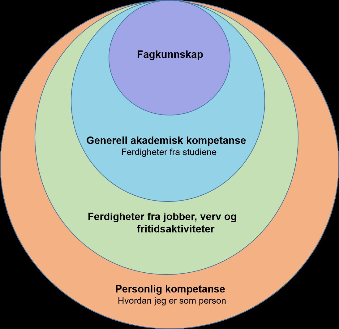 Illustrasjon over flere lag av kompetanse i en person