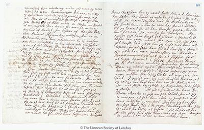 Gunnerus' brev 2. juni 1772 til Carl von Linné. Brevark. Foto: NTNU Universitetsbiblioteket