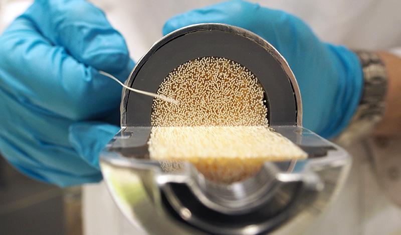Nærbilde av membran. Foto