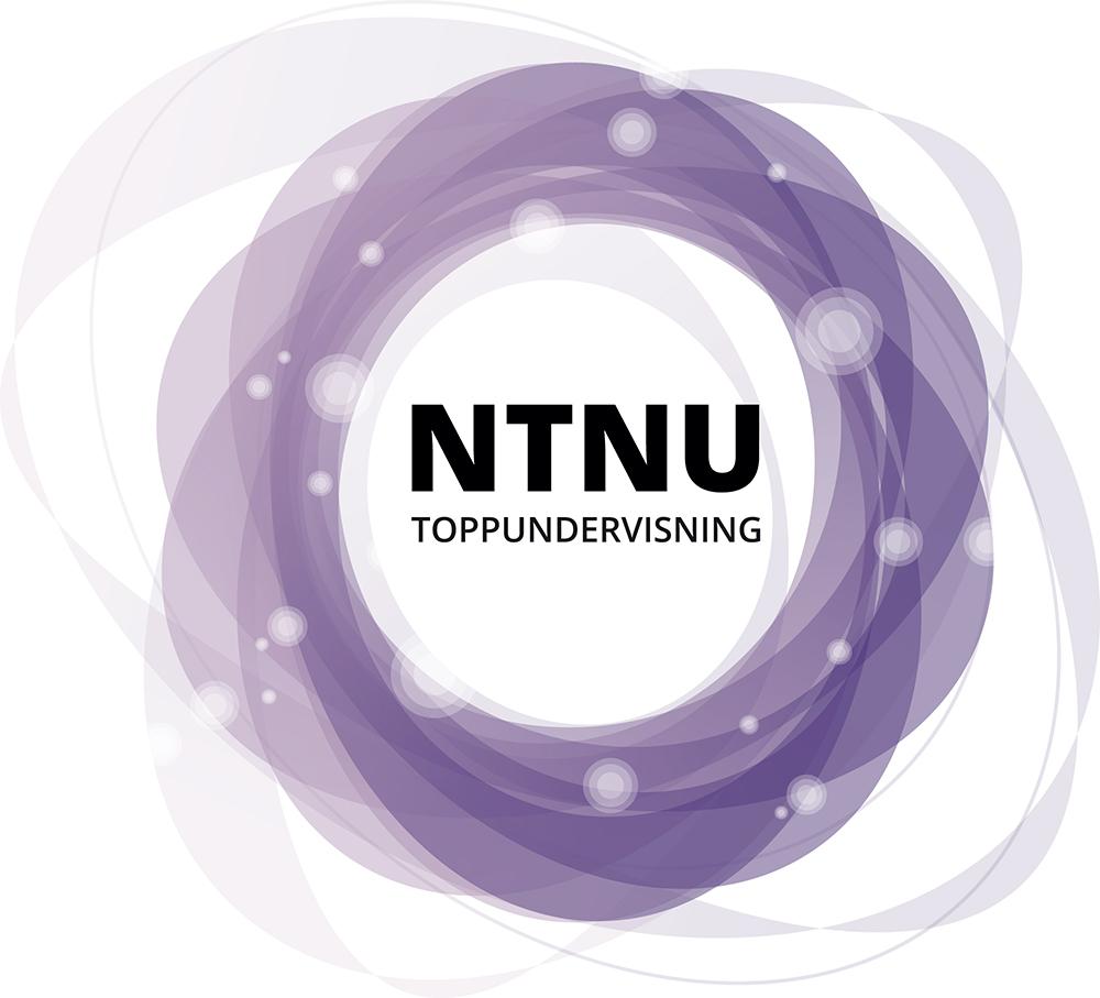 NTNU Toppundervisning, modell