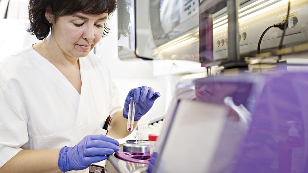 Bioingeniør i laboratorium med beinmargsprøver.
