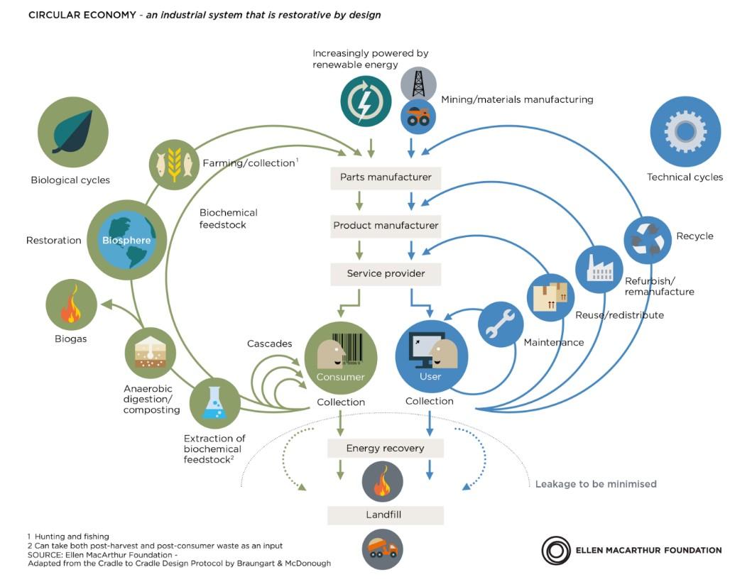 Illustrasjon av en sirkulær økonomi med biologiske og tekniske sykluser.